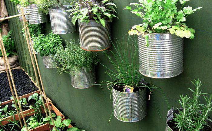 Mini Giardino Sul Balcone : Come creare un orto sul balcone soluzioni fai da te giardini