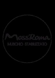 Logo-Mossroma
